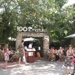 100% Natural Restaurant Playa del Carmen