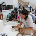 Trina at the CANDi animal clinic