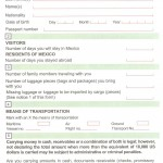 Mexico Customs Form (Front)