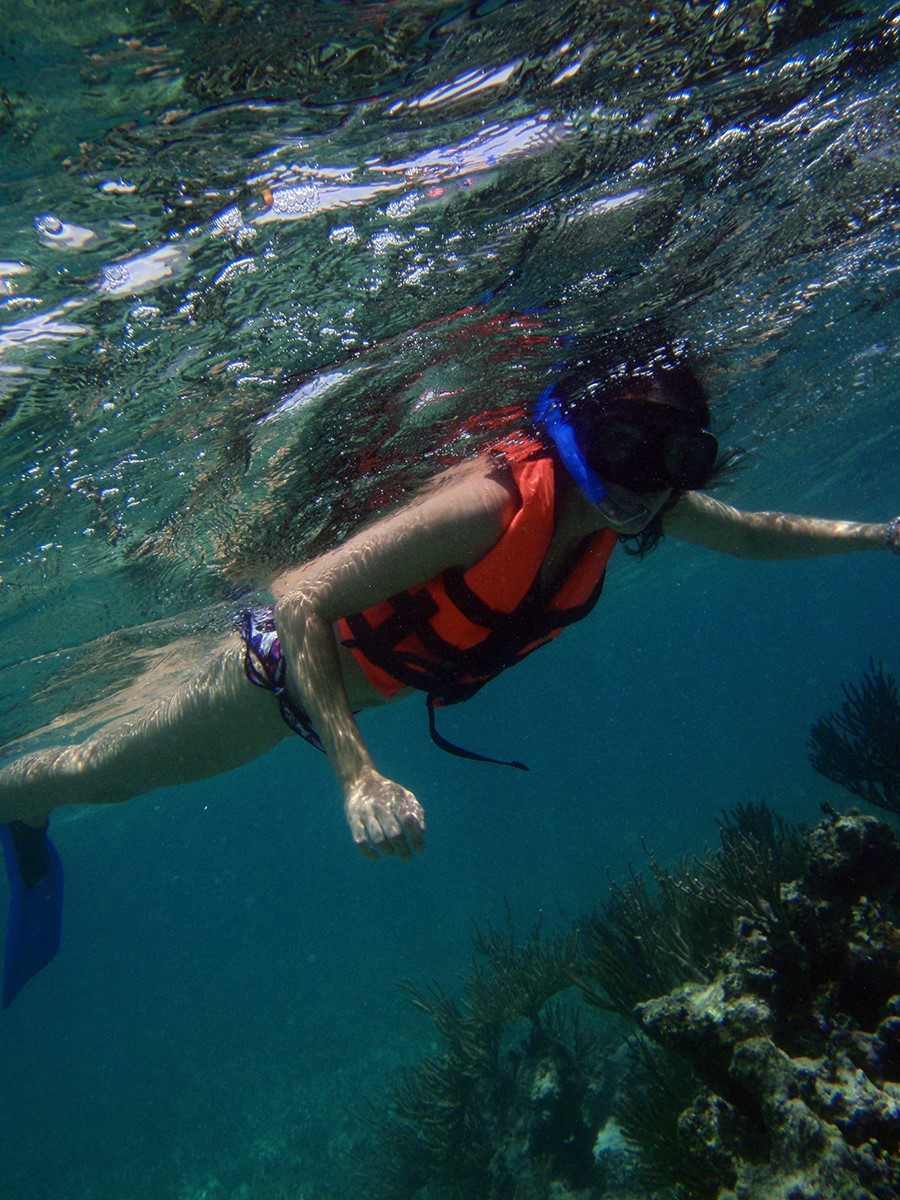 The BEST Snorkeling in Cancun   CARM Blog