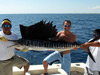Deep Sea Fishing from the Riviera Maya